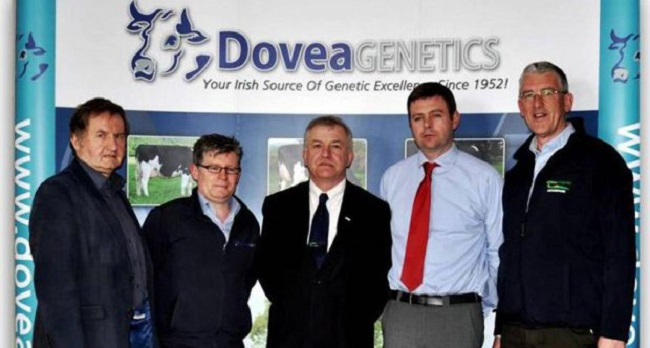 Seamus Crosse (Greenfield Dairy Solutions); Conor Ryan (Dovea); Professor Gerry Boyle (Teagasc director); Ger Ryan (general manager, Dovea); and James O'Loughlin (Teagasc), at a meeting of the Dovea Genetics, Teagasc and Vita partners in the cattle breeding programme in Eritrea